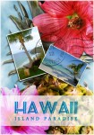 hawaiian paradise postcard example