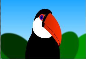 Toucan Graphic